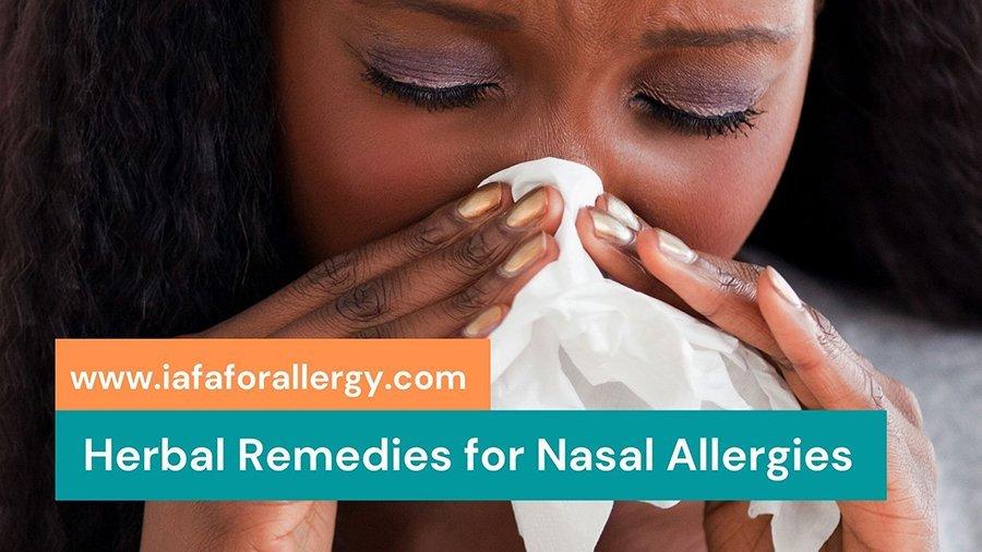 Effective Herbal Remedies for Nasal Allergies